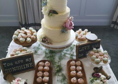 Pretty Buttercream Cake & Mini Cupcakes